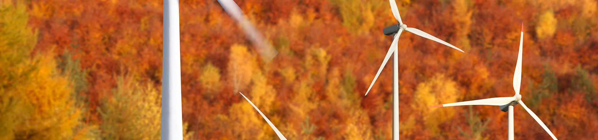 herfst-landing